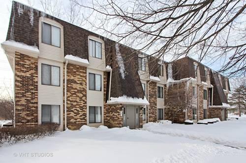 234 W Court Of Shorewood Unit 3B, Vernon Hills, IL 60061