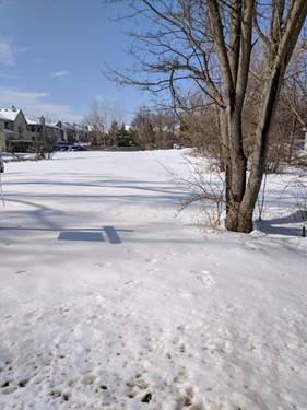 1328 N Portage, Palatine, IL 60067