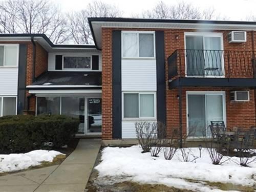 2319 E Olive Unit 2F, Arlington Heights, IL 60004