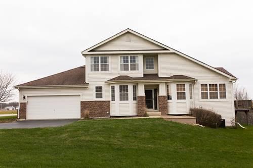 25340 S Mckinley Woods, Channahon, IL 60410