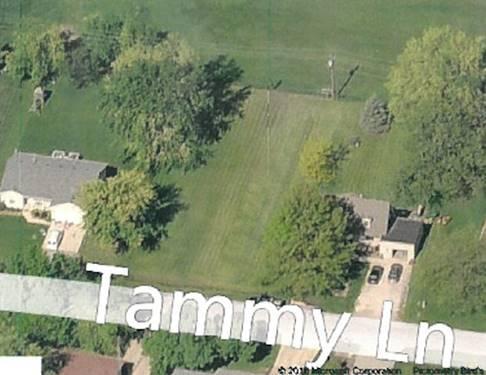 135 Tammy, Lake Holiday, IL 60552