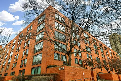 1143 S Plymouth Unit 109, Chicago, IL 60605 South Loop
