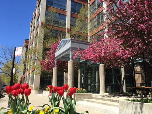 1800 W Roscoe Unit 323, Chicago, IL 60657 Roscoe Village