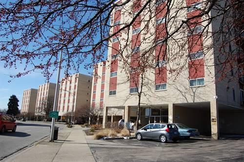 1005 Des Plaines Unit 104, Forest Park, IL 60130