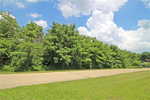 Lot 3 Walnut, Yorkville, IL 60560