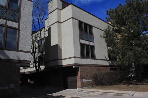 425 S Oak Park Unit B, Oak Park, IL 60302