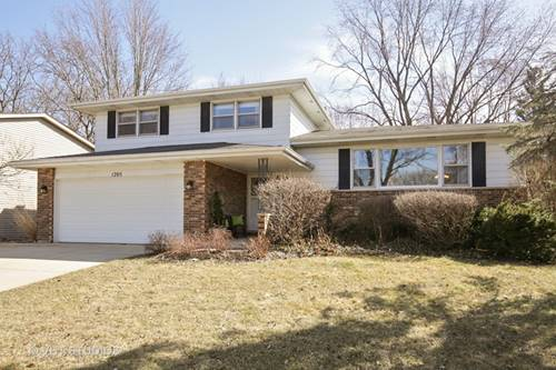 1205 Countryside, Elgin, IL 60123