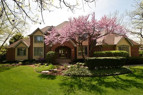 10849 Crystal Springs, Orland Park, IL 60467
