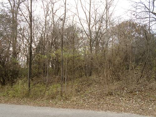 Lot 16 Rose Marie, Wonder Lake, IL 60097