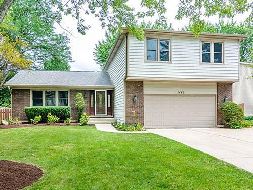 1462 Applegate, Naperville, IL 60565