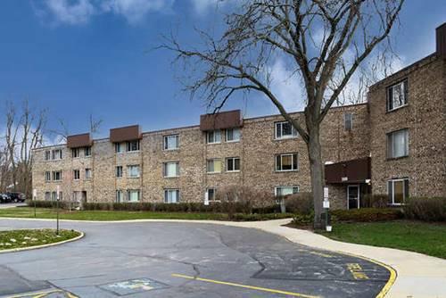 2600 Brookwood Way Unit 317, Rolling Meadows, IL 60008