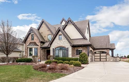 25538 Prairiewood, Shorewood, IL 60404
