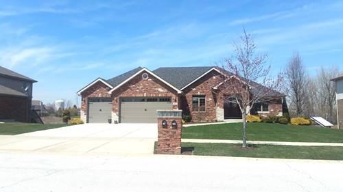 8610 Farmview, Frankfort, IL 60423