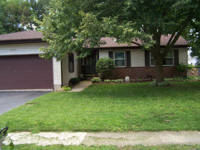 10917 Janice, Huntley, IL 60142