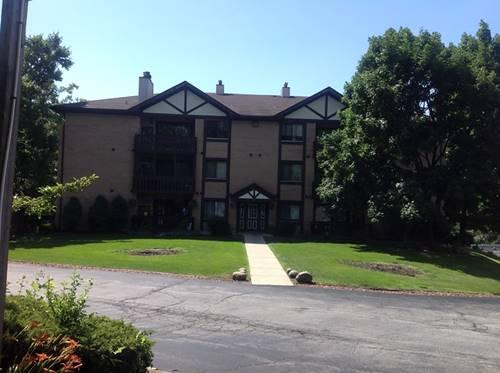 6015 Lakeside Unit 202A, Tinley Park, IL 60477