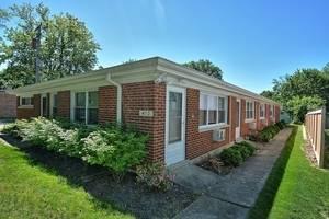 413 Wilson Unit D, Downers Grove, IL 60515