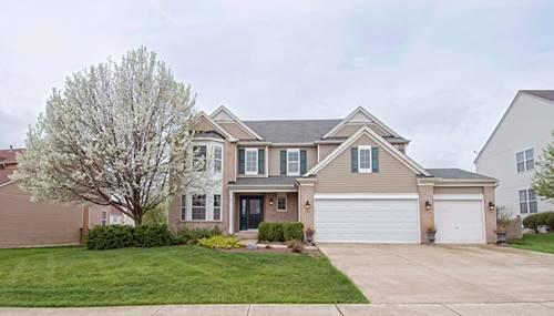 17060 Auburn Ridge, Lockport, IL 60441