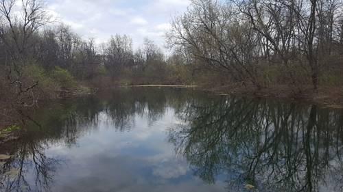 6N976 Brewster Creek - Lot A, Wayne, IL 60184