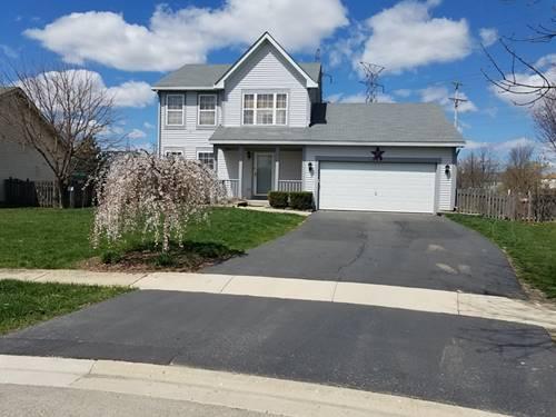206 Summerfield, Romeoville, IL 60446