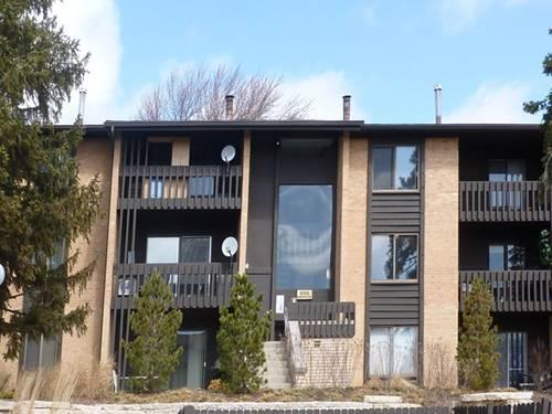 6150 Knoll Wood Unit 304, Willowbrook, IL 60527