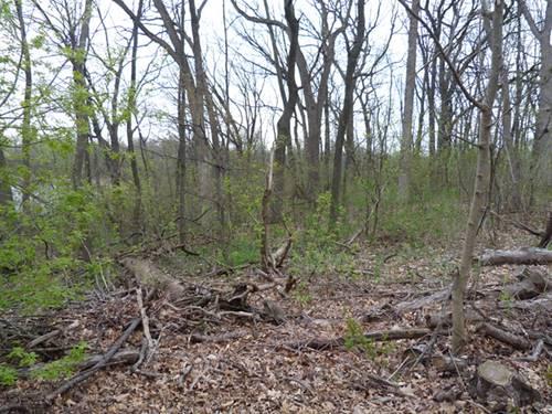 22145 W White Pine, Kildeer, IL 60047