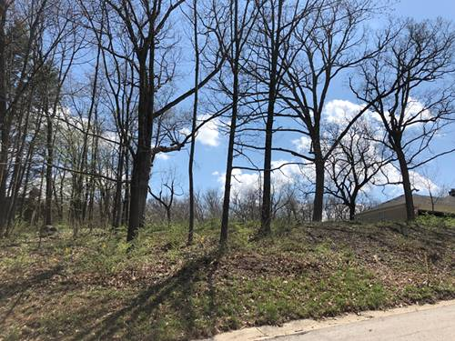 LOT 61 Oak Hill, West Dundee, IL 60118