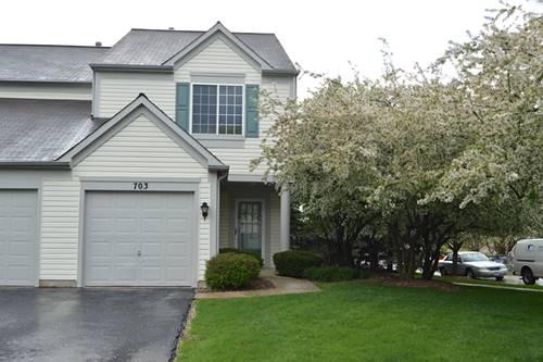 703 Blossom, Naperville, IL 60540