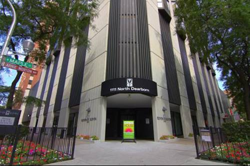 1111 N Dearborn Unit 1008, Chicago, IL 60610