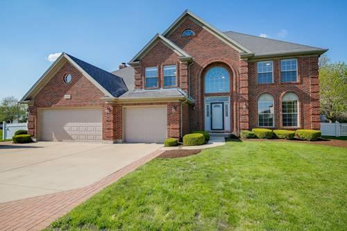 16305 Riverwood, Plainfield, IL 60586