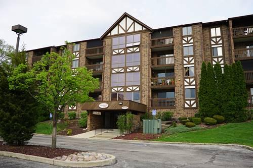 10441 Circle Unit 43C, Oak Lawn, IL 60453