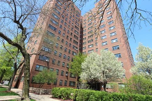 5550 S Dorchester Unit 702, Chicago, IL 60637