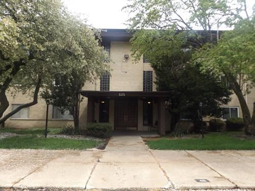 525 S Cleveland Unit 102, Arlington Heights, IL 60005