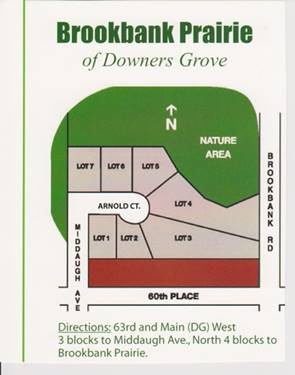 LOT 3 Arnold, Downers Grove, IL 60516