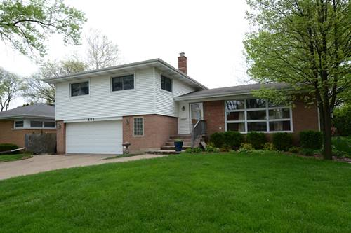 803 S Emerson, Mount Prospect, IL 60056