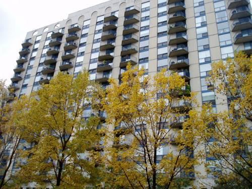 1250 N La Salle Unit 1507, Chicago, IL 60611 Old Town