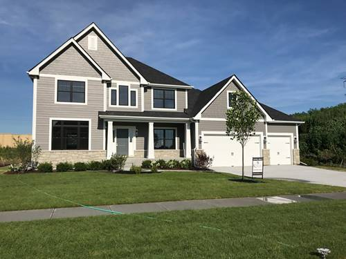 4231 Chinaberry Lot 254, Naperville, IL 60564