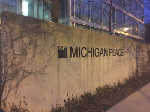 3115 S Michigan Unit 104, Chicago, IL 60616