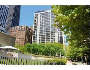 222 E Pearson Unit 207, Chicago, IL 60611 Streeterville