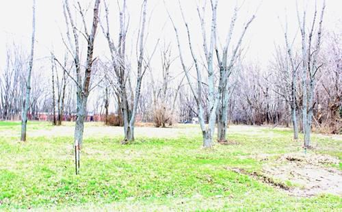 25862 N Willow Springs, Mundelein, IL 60060