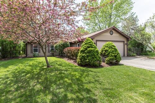 1157 Holly, Algonquin, IL 60102