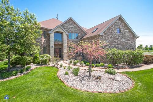 22243 Mary, Frankfort, IL 60423