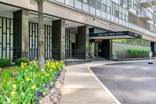 1000 N Lake Shore Unit 801, Chicago, IL 60611 Gold Coast