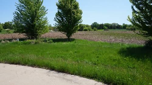 217 Surrey, Spring Grove, IL 60081