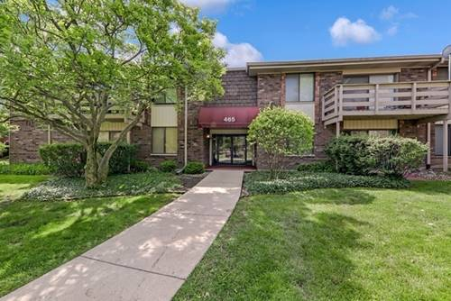 465 Raintree Unit 2D, Glen Ellyn, IL 60137