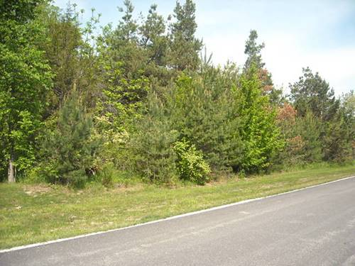 Lot 23 S Pinewood, Monee, IL 60449