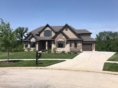 12630 Whisper Creek, Mokena, IL 60448