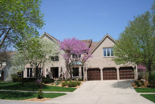1005 Sheppey, Naperville, IL 60565