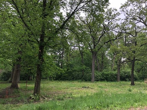 302 Lot2 S Nolton, Willow Springs, IL 60480