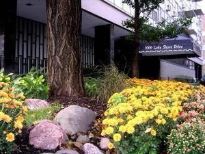 1000 N Lake Shore Unit 802, Chicago, IL 60611 Gold Coast