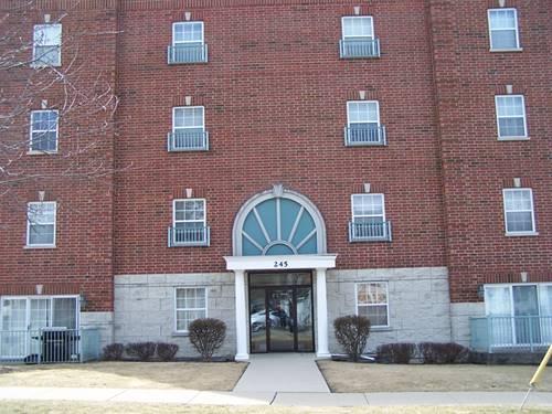 245 W Johnson Unit 306, Palatine, IL 60067